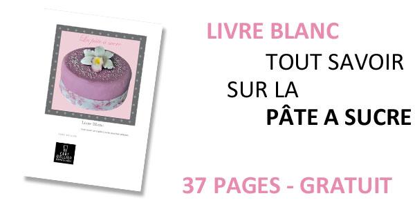 un livre gratuit sur la p 226 te 224 sucre cousine s cake delphine hubert