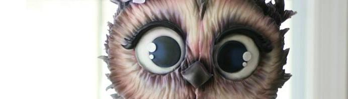 bandeau-owl-cake