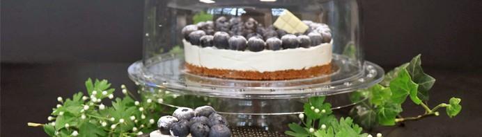 bandeau-recette-cheesecake-myrtilles